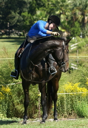 FREE Trail Riding Marthas Vineyard Island