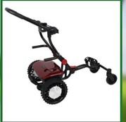 Sunrisegolfcarts.com offers affordable remote control golf cart